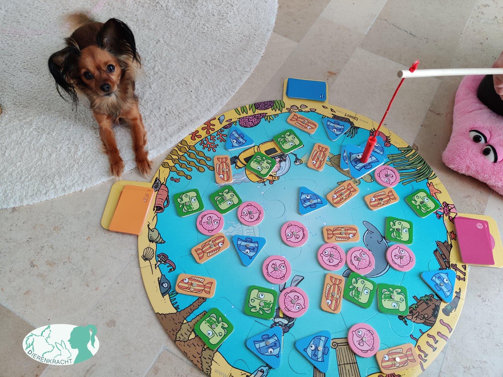Therapie met honden